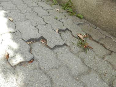 la pavimentazione del Quartiere Cogne, quanti sono caduti?